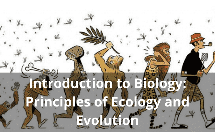Introduction to Biology: Principles of Ecology and Evolution