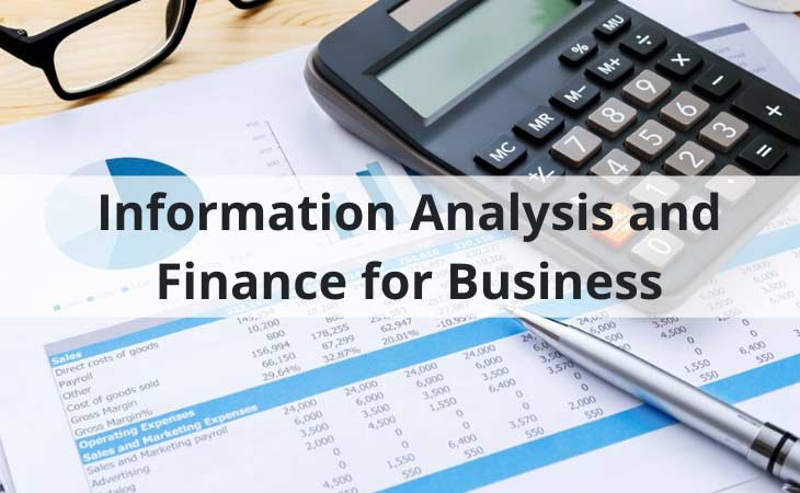 Information Analysis and Finance for Business
