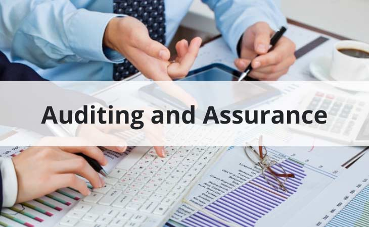 Auditing and Assurance